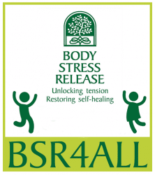 Stichting BSR4All logo